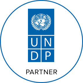 softengi-achievement-UNDP Partner