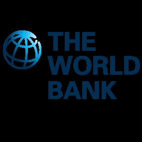 softengi-achievement-World Bank Partner