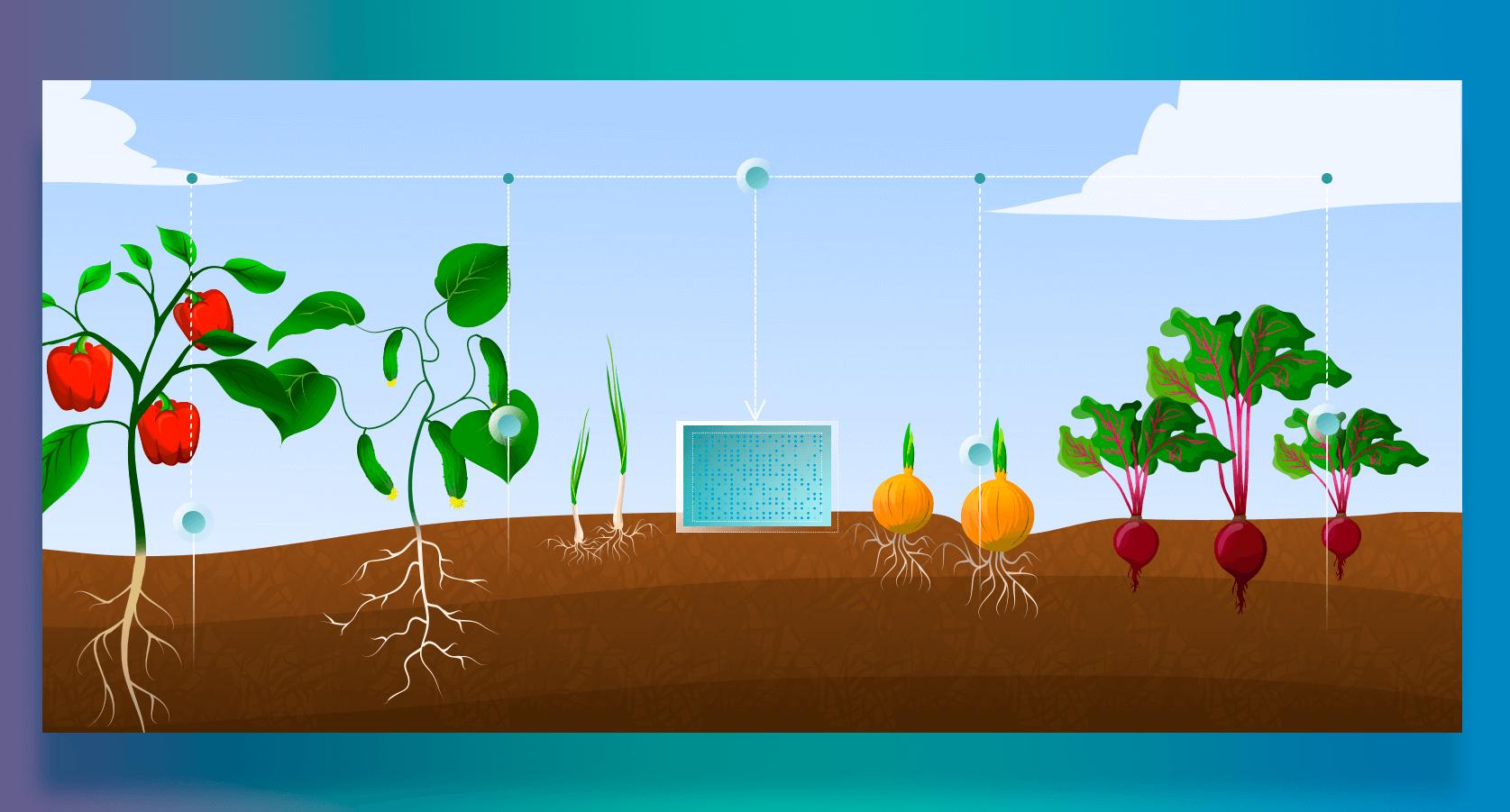 Soil Sampling Solution  Softengi