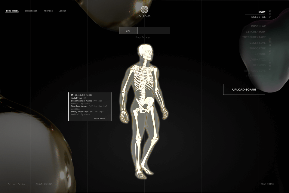 Virtual avatar for body parts visualization developed  by Softengi